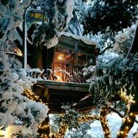 ♡都會裡的秘密基地♡東京近郊的超人氣『樹屋咖啡廳』~♪