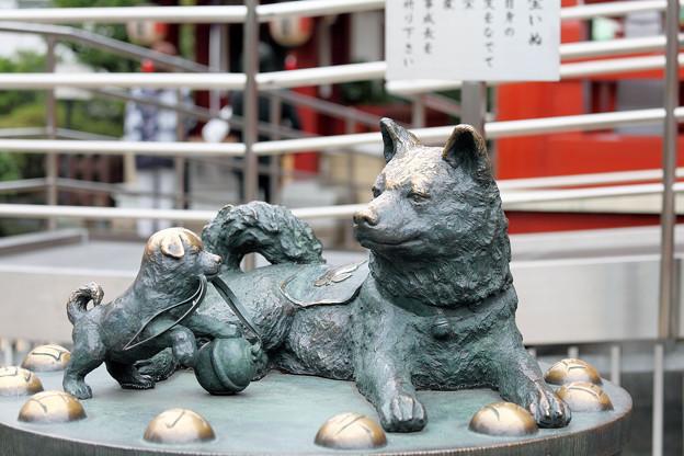 只好祈求神明了~有拜有保疪♡日本人才知道的東京都內「可以實現特殊願望」神社介紹♪その2