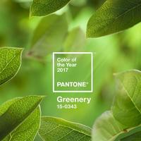 2017年綠色當道!「Greenery」草綠色☆從頭到腳幫妳搭好好◎