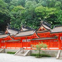 初詣をスペシャルに♪ちょっと変わったおみくじが引ける神社
