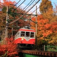 11月中旬が見頃♡箱根の遊覧船で紅葉狩りデートはいかが?