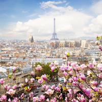 インスタでパリ旅行気分♡毎日覗きたいフランスの人気アカウント6つ