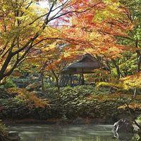 カップルで楽しむ♡秋の関東近郊オススメ「デートスポット」4選