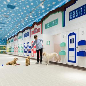 横浜にNEWオープン!犬と人の複合施設WANCOTTが気になる♪