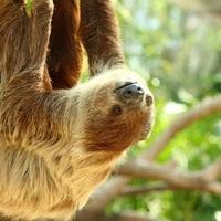大人にこそおすすめします!関東の動物園で表情やしぐさに癒されて♡