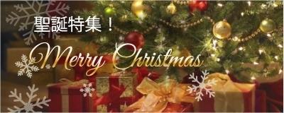 MERRY CHRISTMAS❄︎☃聖誕節特集~♡